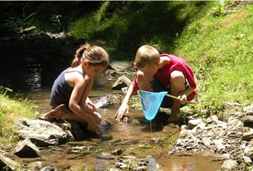 kids_in_the_stream