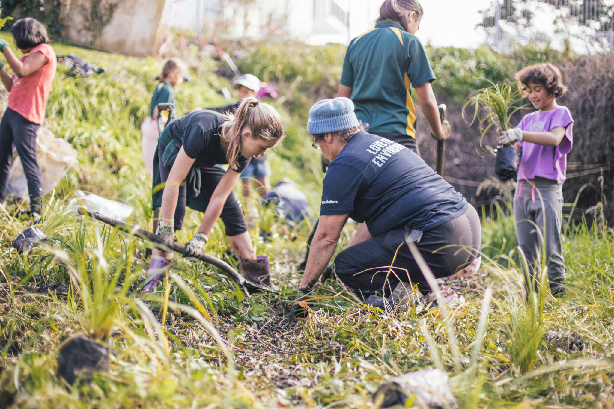1706 Planting with Sunnyvale Primary – 7236 – 2k